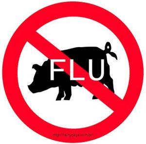8 Mitos sobre a gripe suína H1N1