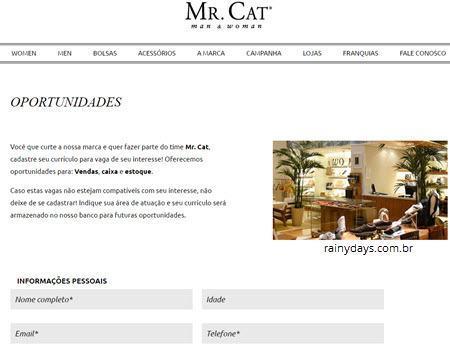 Como Trabalhar na Mr Cat