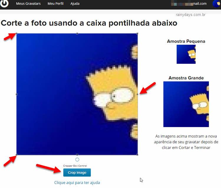 Como mostrar sua foto nos comentários de sites e blogs, Gravatar