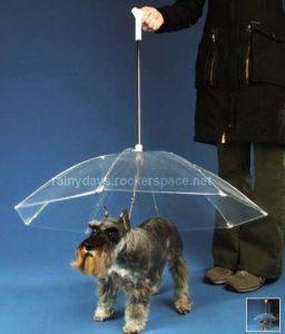 Coleira Guarda-Chuva para Cachorros (Foto, Dogbrella)