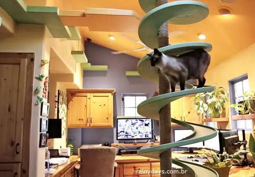 Homem Transforma a Casa Parque para seus 15 Gatos