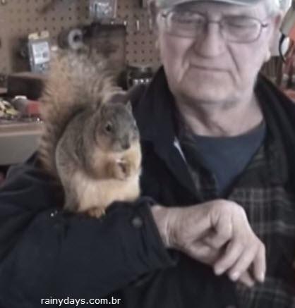 esquilo-solto-volta-para-dono-quando-e-chamado