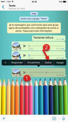 Dados de mensagem de áudio em grupo WhatsAPp iPHone