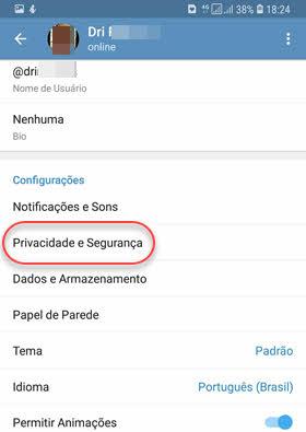 configurações Privacidade e Segurança Telegram