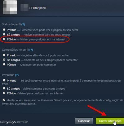 verificar perfil publico no Steam 4