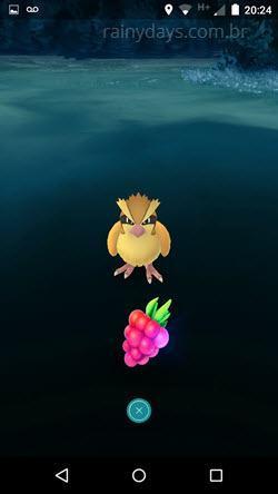 usar a Razz Berry no Pokémon Go 3