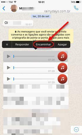 salvar mensagens de áudio do WhatsApp no iOS 2