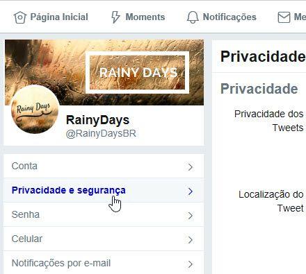 Privacidade e Segurança Twitter PC