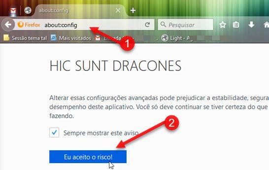 Eu aceito o risco About Config Firefox