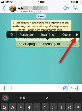 ícone setinha para direita mensagem selecionada WhatsApp iOS