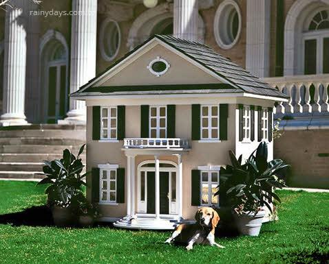 mansões para cachorro igual ao dono